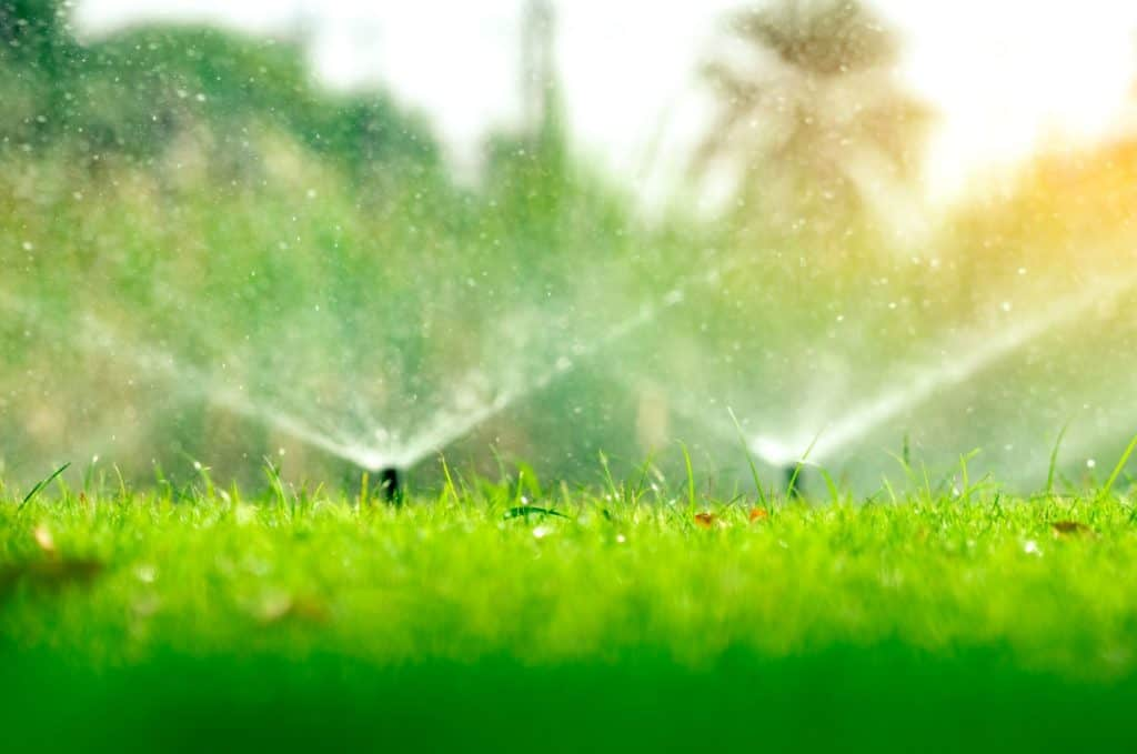 Is An Irrigation System Worth The Cost